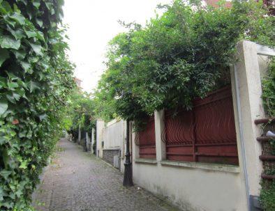 Buttes-Chaumont-Mouzaia-rue